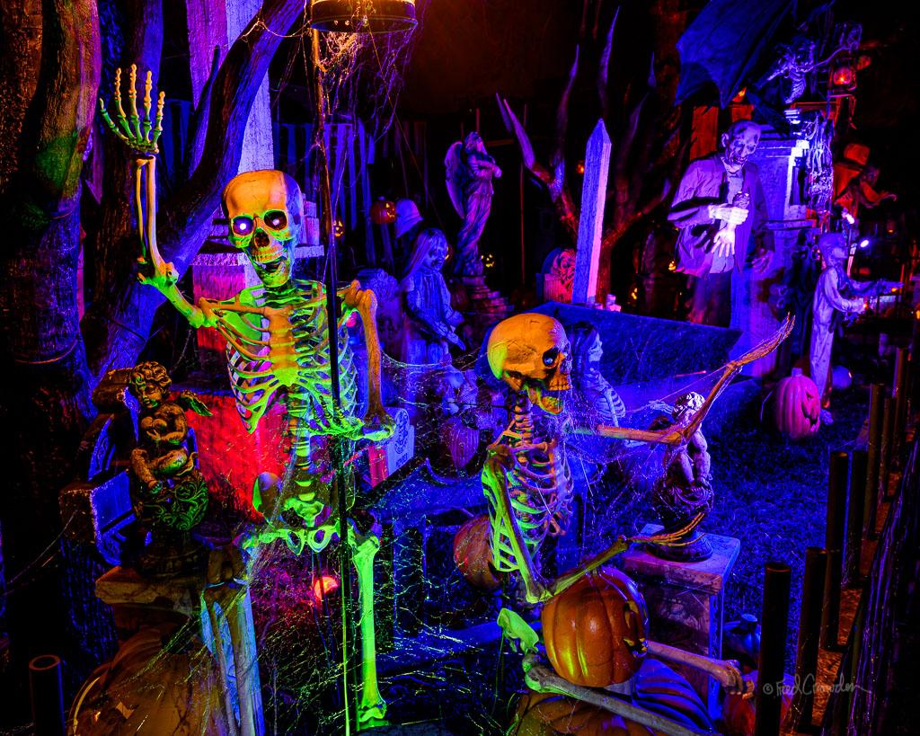 2019 10 22 Halloween 4829 Phoenix Dead Rising Web